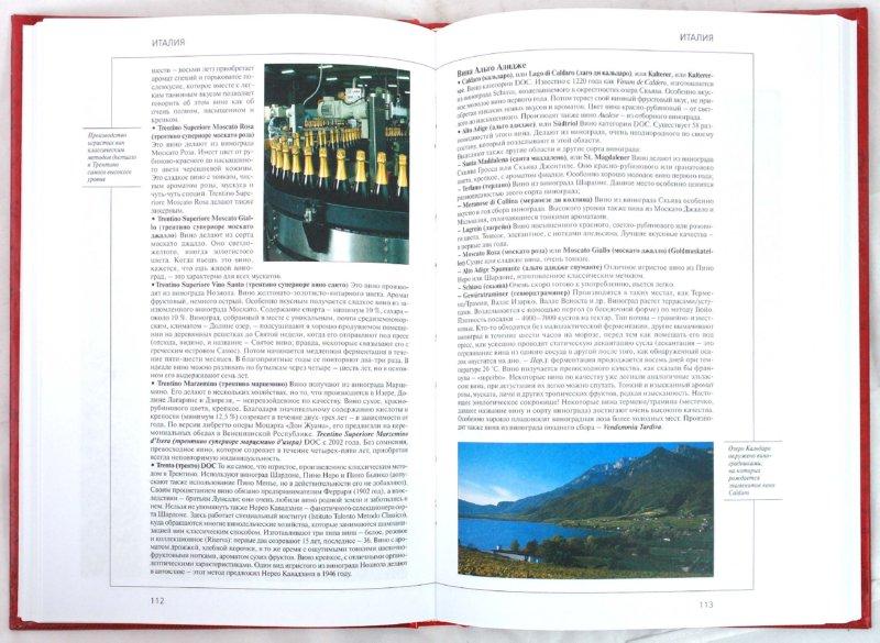 Иллюстрация 1 из 28 для Вина мира - Джузеппе Сикери | Лабиринт - книги. Источник: Лабиринт