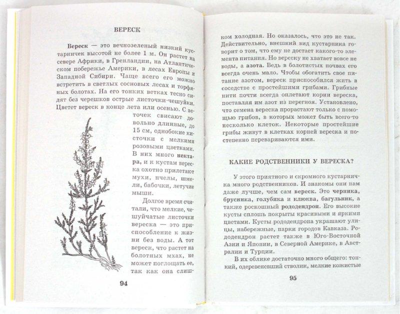 Иллюстрация 1 из 7 для Я познаю мир. Растения - Людмила Багрова | Лабиринт - книги. Источник: Лабиринт