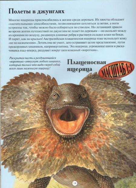 Иллюстрация 1 из 24 для Рептилии - Ханна Уилсон | Лабиринт - книги. Источник: Лабиринт