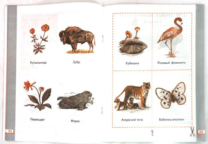Иллюстрация 1 из 13 для Окружающий мир: Рабочая тетрадь №2. 1 класс - Ивченкова, Потапов | Лабиринт - книги. Источник: Лабиринт