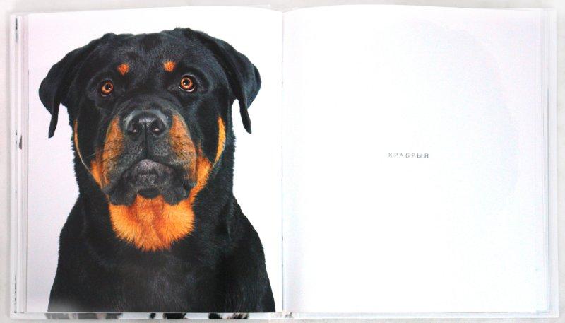 Иллюстрация 1 из 10 для День собаки, или Весь цвет собачьего племени - Гэнди Вэсэн | Лабиринт - книги. Источник: Лабиринт