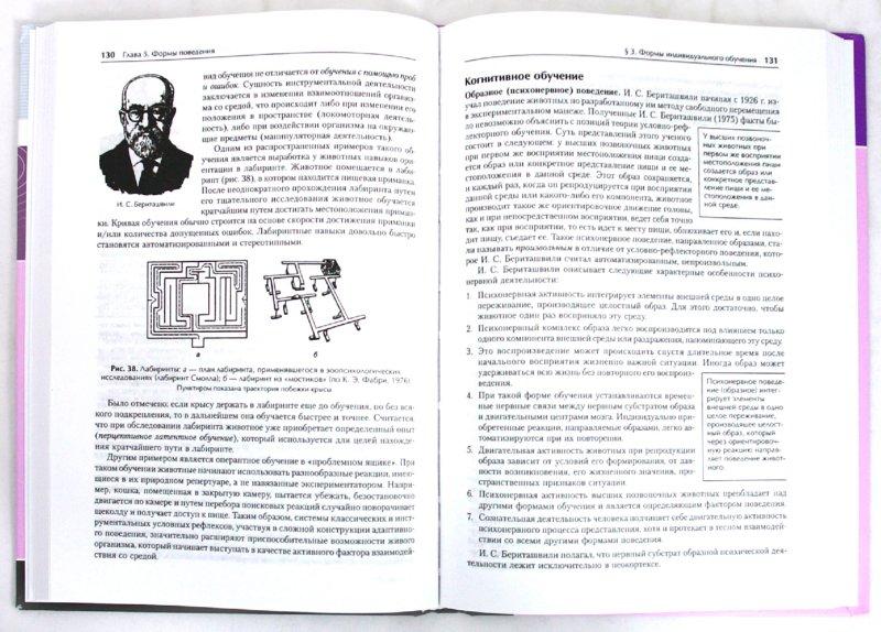 Иллюстрация 1 из 3 для Физиология высшей нервной деятельности и сенсорных систем: Учебник для вузов - Александр Батуев | Лабиринт - книги. Источник: Лабиринт