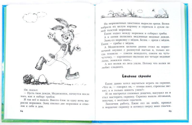 Иллюстрация 1 из 9 для Однажды в солнечный день - Сергей Козлов | Лабиринт - книги. Источник: Лабиринт