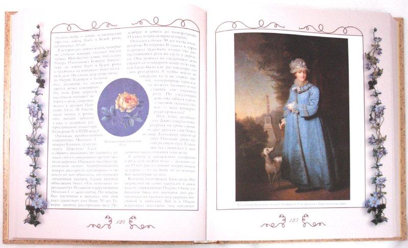 Иллюстрация 1 из 38 для Царство Флоры. Цветы и деревья в легендах и мифах - Светлана Лаврова | Лабиринт - книги. Источник: Лабиринт