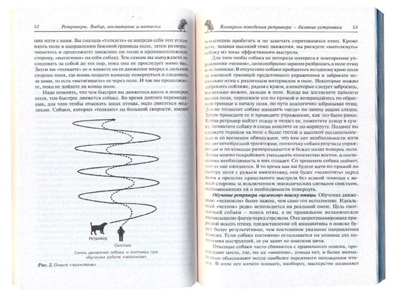 Иллюстрация 1 из 7 для Ретриверы. Выбор, воспитание и натаска - Петр Жуковский | Лабиринт - книги. Источник: Лабиринт