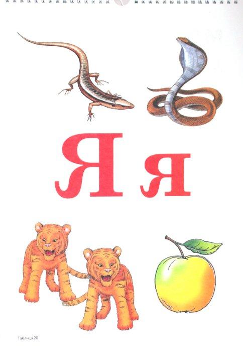 Иллюстрация 1 из 12 для Формируем навыки чтения. Демонстрационные таблицы для обучения грамоте и развития техники чтения - Цуканова, Бетц | Лабиринт - книги. Источник: Лабиринт