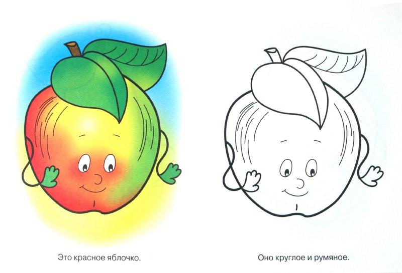 """Иллюстрация 1 из 15 для Раскраска для малышей """"Фрукты. Рыжий апельсин""""   Лабиринт - книги. Источник: Лабиринт"""