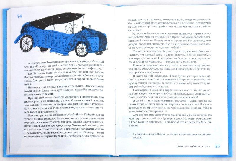 Иллюстрация 1 из 30 для Собачья жизнь и другие рассказы - Людвик Ашкенази | Лабиринт - книги. Источник: Лабиринт