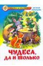 Чудеса, да и только, Абрамцева Наталья Корнельевна