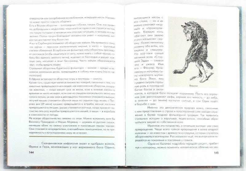 Иллюстрация 1 из 81 для В стране троллей. Кто есть кто в норвежском фольклоре - Е. Рачинская | Лабиринт - книги. Источник: Лабиринт