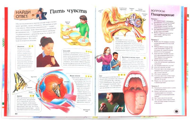 Иллюстрация 1 из 23 для Интерактивная энциклопедия для школьников - Гиффорд, Мейсон, О`Брайен, Варлей | Лабиринт - книги. Источник: Лабиринт