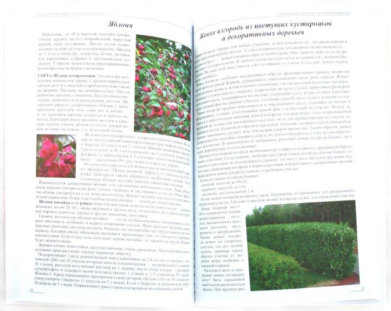 Иллюстрация 1 из 11 для Все о декоративных кустарниках, деревьях и цветах - Ганичкина, Ганичкин | Лабиринт - книги. Источник: Лабиринт