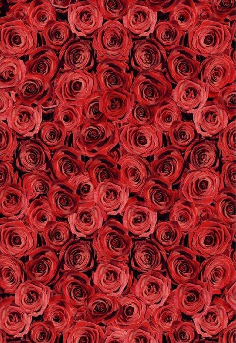"""Иллюстрация 1 из 10 для Пазл-500 """"Розы"""" (14137)   Лабиринт - игрушки. Источник: Лабиринт"""