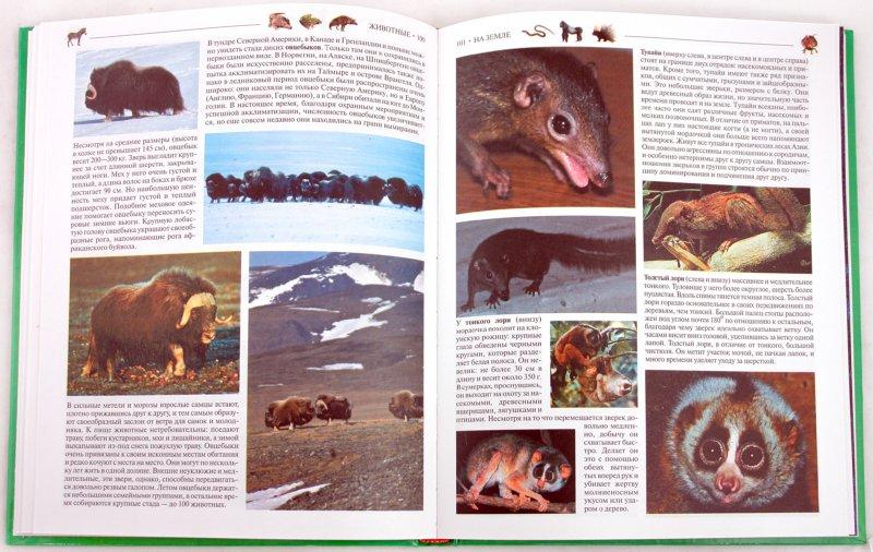 Иллюстрация 1 из 10 для Большая детская энциклопедия: Животные | Лабиринт - книги. Источник: Лабиринт