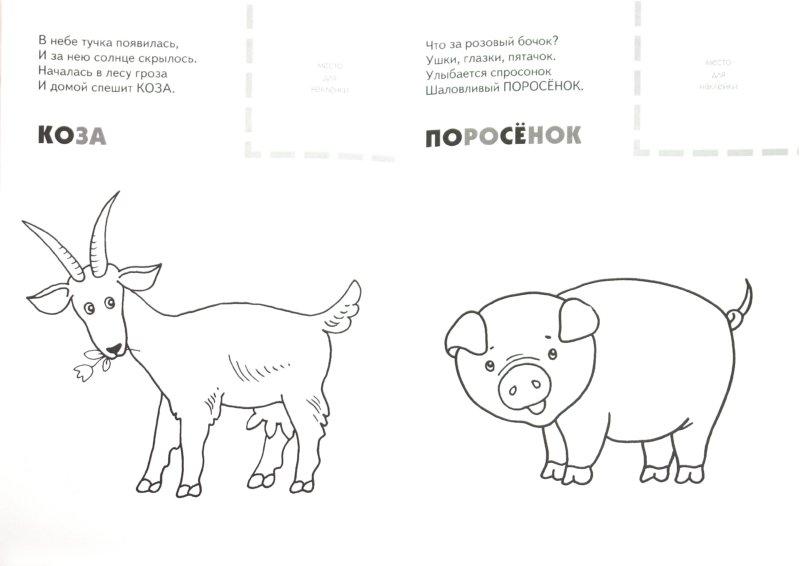 Иллюстрация 1 из 9 для Назови, раскрась, наклей: Домашние животные - Бурмистрова, Мороз | Лабиринт - книги. Источник: Лабиринт
