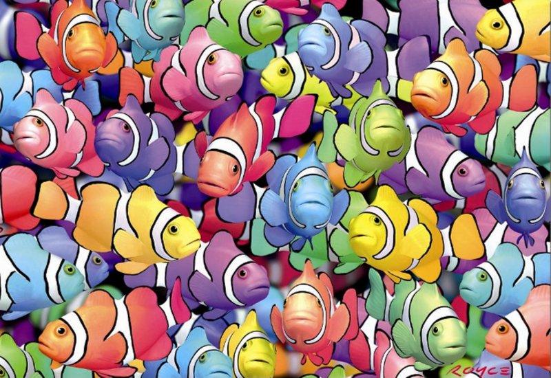 """Иллюстрация 1 из 2 для Пазл-1000 """"Рыбы-клоуны"""" (13769)   Лабиринт - игрушки. Источник: Лабиринт"""