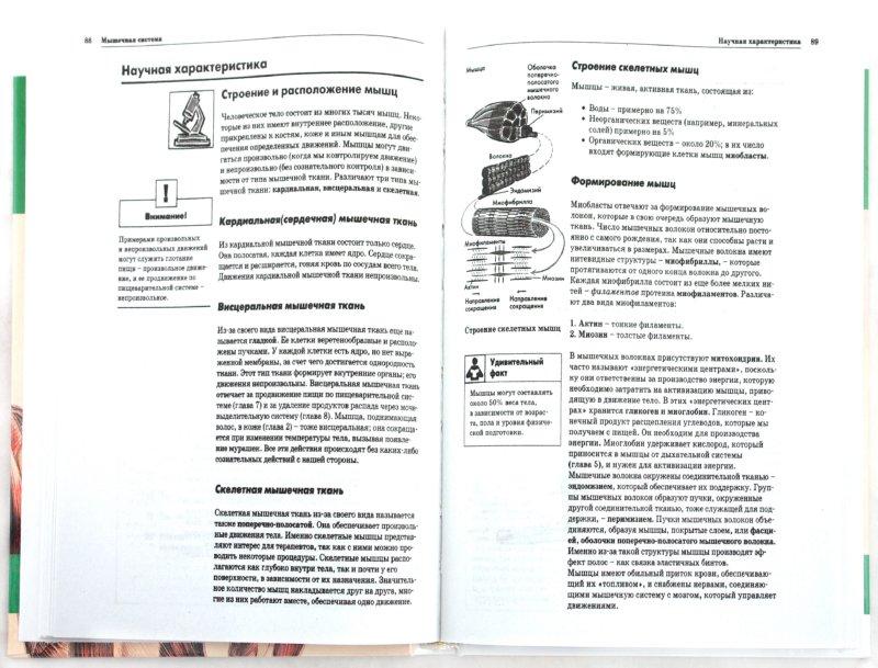 Иллюстрация 1 из 7 для Анатомия и физиология | Лабиринт - книги. Источник: Лабиринт