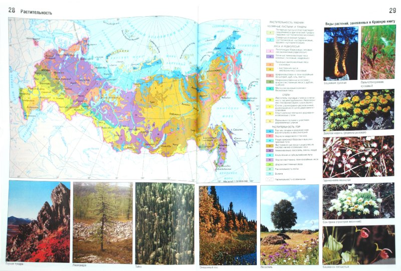 Иллюстрация 1 из 15 для Атлас. География России. Природа и население. 8-й класс   Лабиринт - книги. Источник: Лабиринт