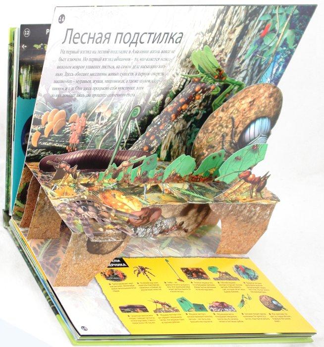 Иллюстрация 1 из 19 для Дождевые леса - Джо Фулман | Лабиринт - книги. Источник: Лабиринт