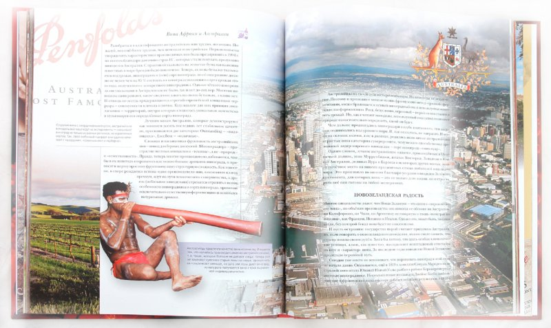 Иллюстрация 1 из 38 для Вина мира   Лабиринт - книги. Источник: Лабиринт