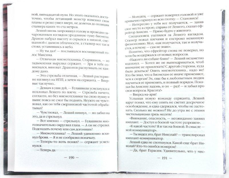 Иллюстрация 1 из 10 для Время огня - Вячеслав Шалыгин | Лабиринт - книги. Источник: Лабиринт