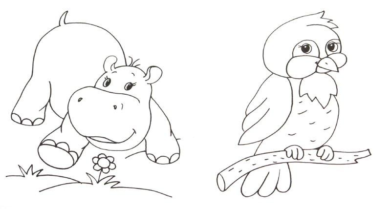 Иллюстрация 1 из 22 для Каких животных мы знаем | Лабиринт - книги. Источник: Лабиринт