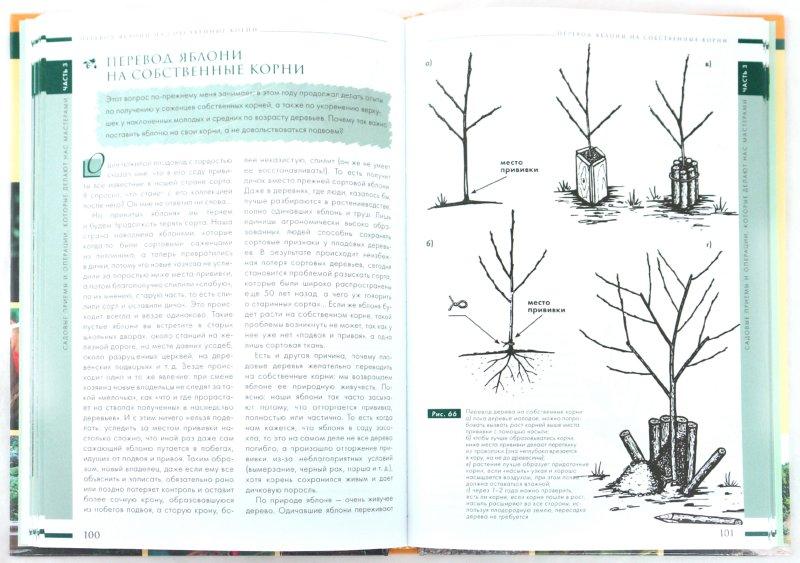 Иллюстрация 1 из 9 для Копилка изобретательного садовода, цветовода и огородника - Павел Траннуа | Лабиринт - книги. Источник: Лабиринт