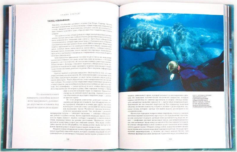 Иллюстрация 1 из 22 для Океаны. Тайны подводного мира - Роуз, Лейкинг | Лабиринт - книги. Источник: Лабиринт