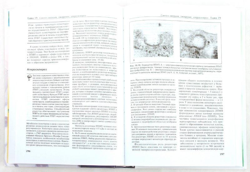 Иллюстрация 1 из 4 для Биохимия - Чиркин, Данченко | Лабиринт - книги. Источник: Лабиринт