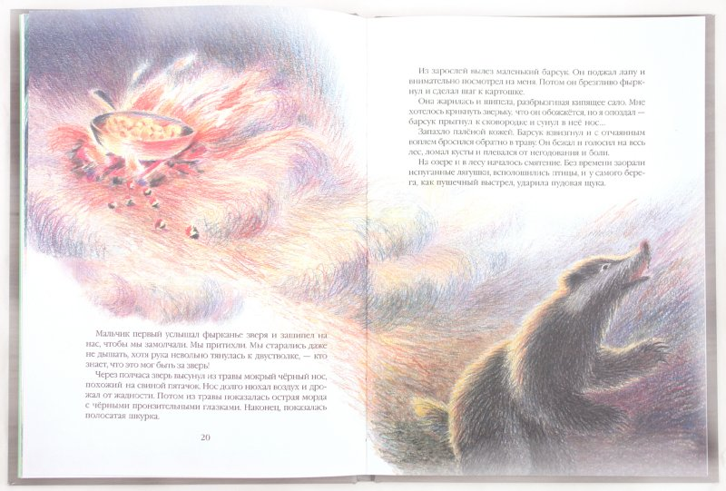 Иллюстрация 1 из 64 для Кот-ворюга - Константин Паустовский   Лабиринт - книги. Источник: Лабиринт