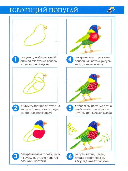 Иллюстрация 1 из 22 для Заморские птицы (рисование красками) - Ирина Лыкова | Лабиринт - книги. Источник: Лабиринт