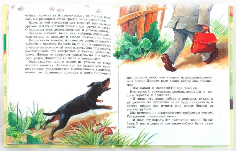 Иллюстрация 1 из 16 для Как правильно любить собак - Эдуард Успенский   Лабиринт - книги. Источник: Лабиринт