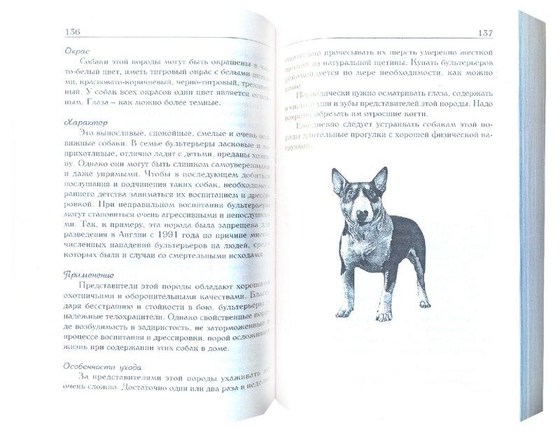 Иллюстрация 1 из 29 для Знакомьтесь, это ваша собака! | Лабиринт - книги. Источник: Лабиринт
