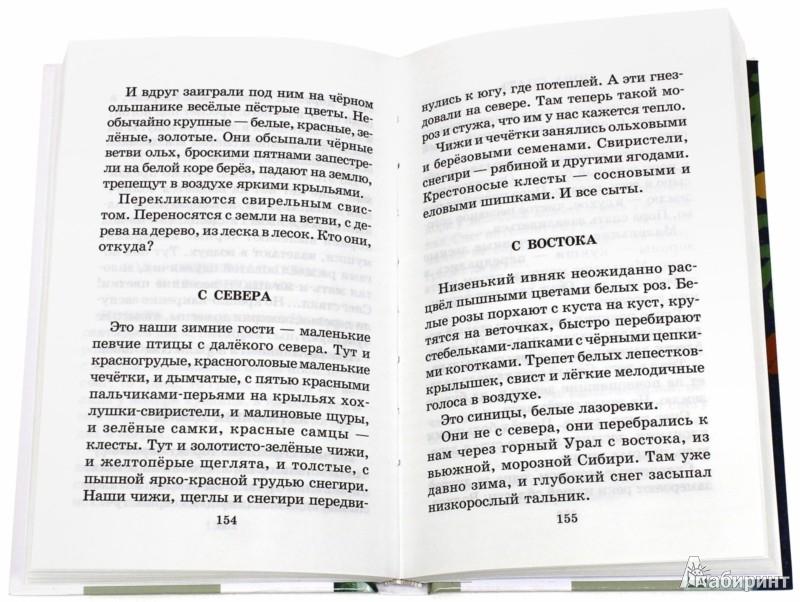 Иллюстрация 1 из 15 для Лесная газета. Сказки и рассказы - Виталий Бианки   Лабиринт - книги. Источник: Лабиринт