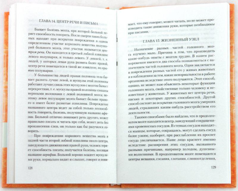 Иллюстрация 1 из 40 для Занимательная физиология - Александр Никольский | Лабиринт - книги. Источник: Лабиринт