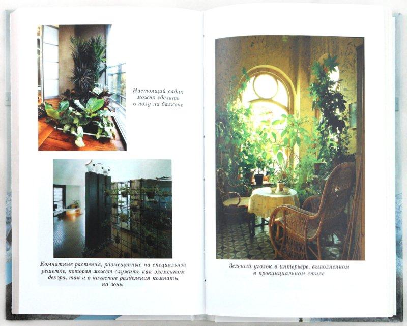 Иллюстрация 1 из 10 для Азы фитодизайна - Грожан, Кузнецова | Лабиринт - книги. Источник: Лабиринт