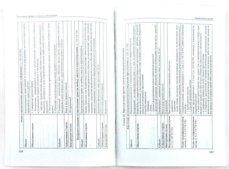 Иллюстрация 1 из 14 для Уголовное право России в схемах и определениях. Учебное пособие - Бриллиантов, Иванова | Лабиринт - книги. Источник: Лабиринт