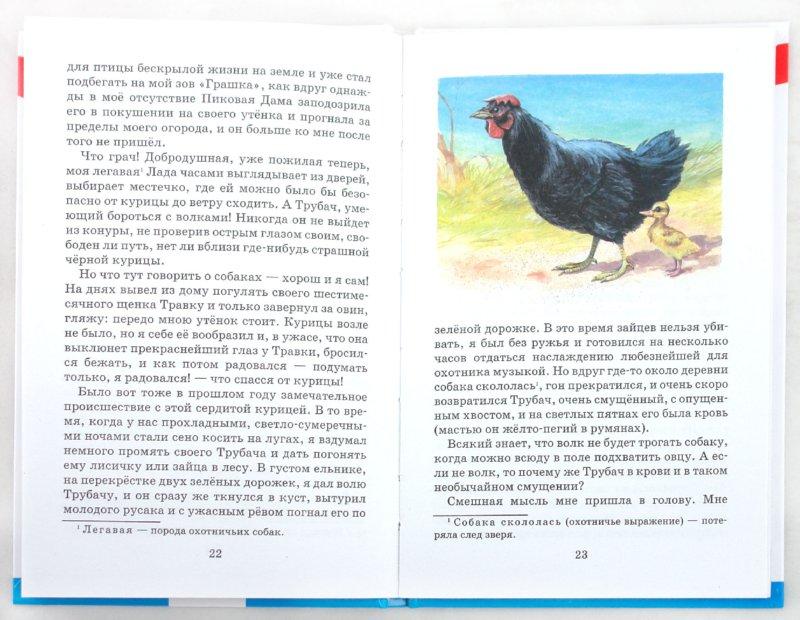 Иллюстрация 1 из 15 для Ребята и утята - Михаил Пришвин | Лабиринт - книги. Источник: Лабиринт