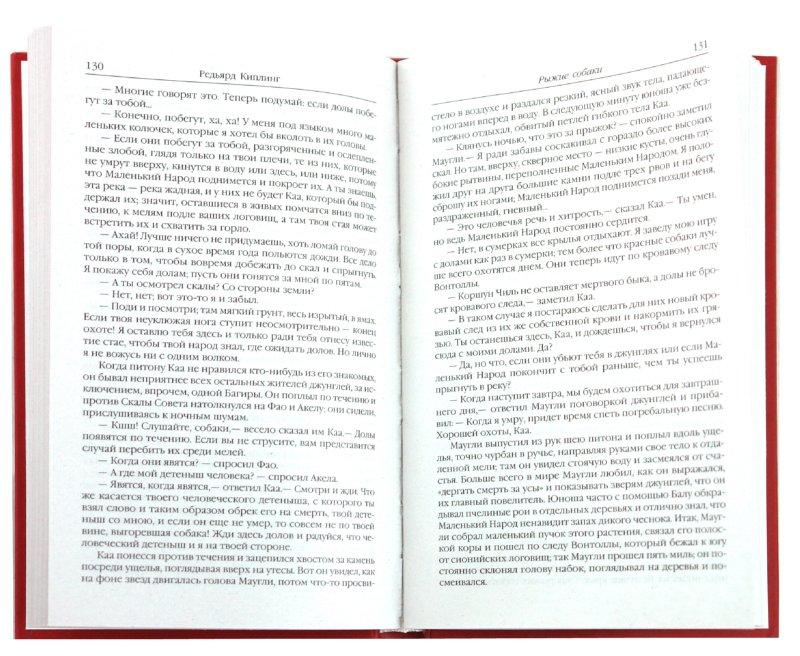 Иллюстрация 1 из 7 для Книга джунглей - Редьярд Киплинг | Лабиринт - книги. Источник: Лабиринт