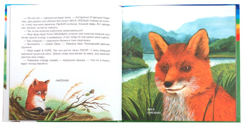 Иллюстрация 1 из 20 для Лесные животные и ежик Шуня - Татьяна Рик | Лабиринт - книги. Источник: Лабиринт