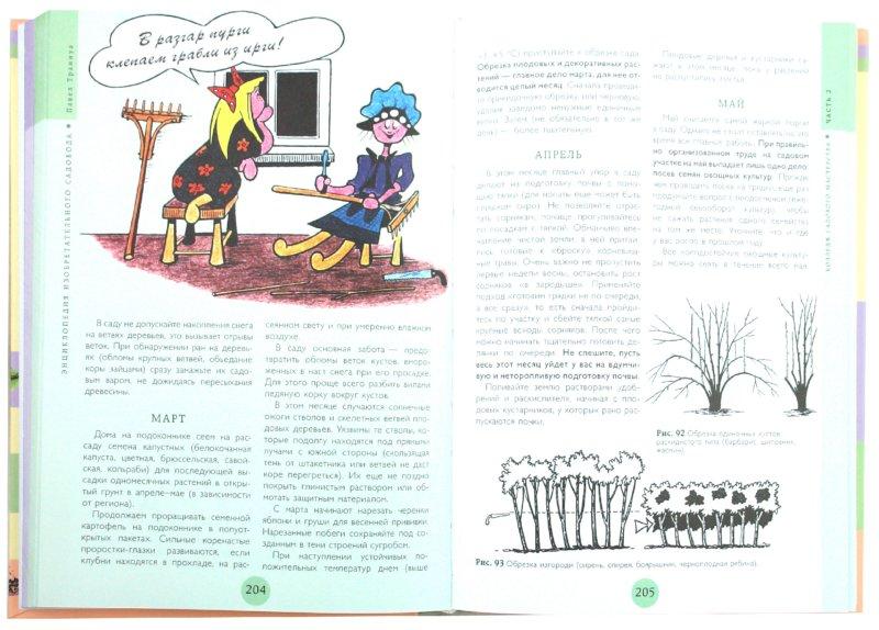 Иллюстрация 1 из 13 для Энциклопедия изобретательного садовода - Павел Траннуа | Лабиринт - книги. Источник: Лабиринт