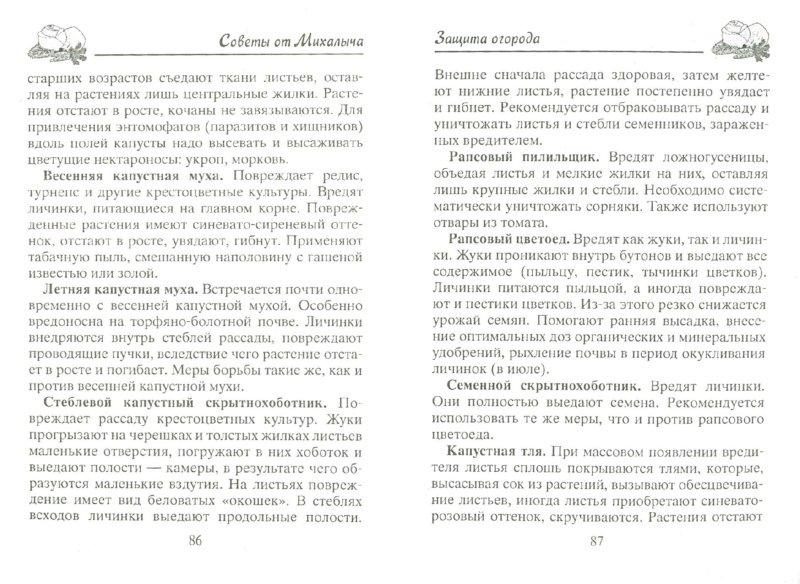 Иллюстрация 1 из 6 для Защита огорода и сада без химии и яда - Николай Звонарев | Лабиринт - книги. Источник: Лабиринт