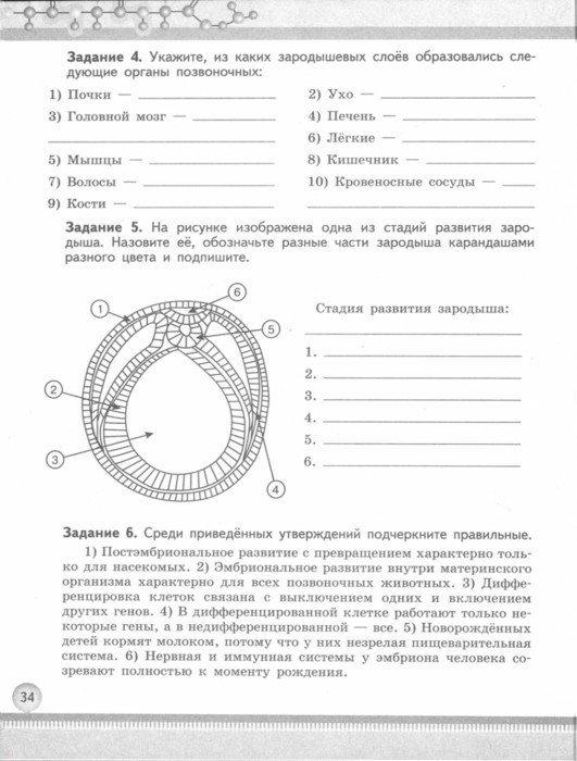козлова 10-11 гдз класс тетрадь рабочая