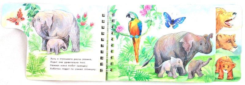 Иллюстрация 1 из 6 для В жарких странах - Юлия Каспарова | Лабиринт - книги. Источник: Лабиринт