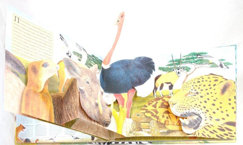 Иллюстрация 1 из 30 для Саванна - Валери Дейвис | Лабиринт - книги. Источник: Лабиринт