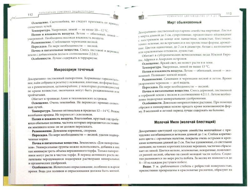 Иллюстрация 1 из 10 для Комнатное цветоводство об А до Я | Лабиринт - книги. Источник: Лабиринт