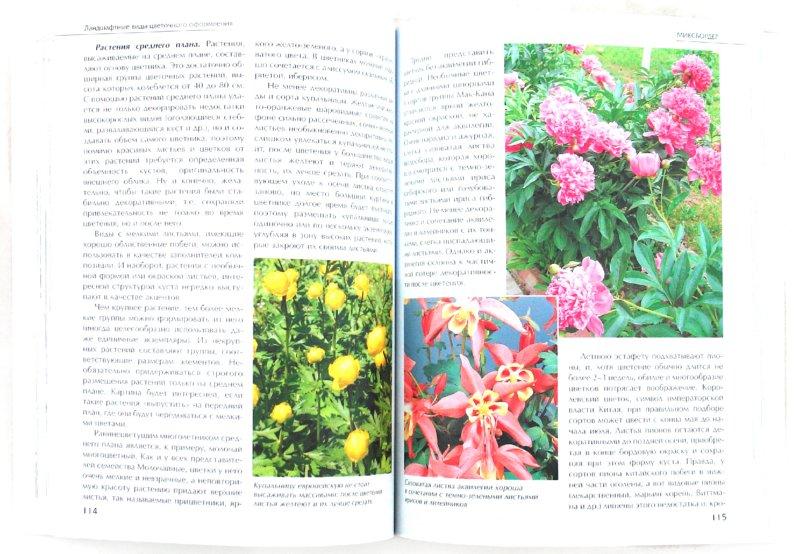 Иллюстрация 1 из 6 для Создаем красивый цветник - Ирина Бочкова | Лабиринт - книги. Источник: Лабиринт