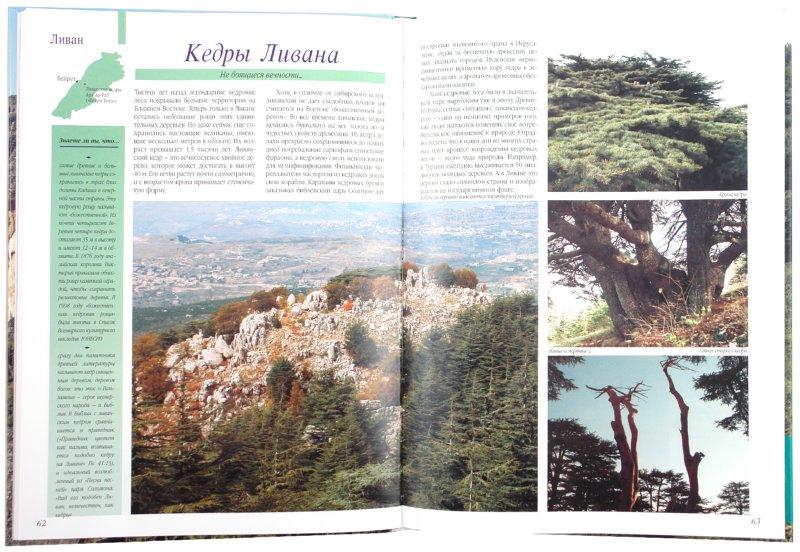 Иллюстрация 1 из 45 для Самые знаменитые чудеса природы - Шахов, Маневич | Лабиринт - книги. Источник: Лабиринт