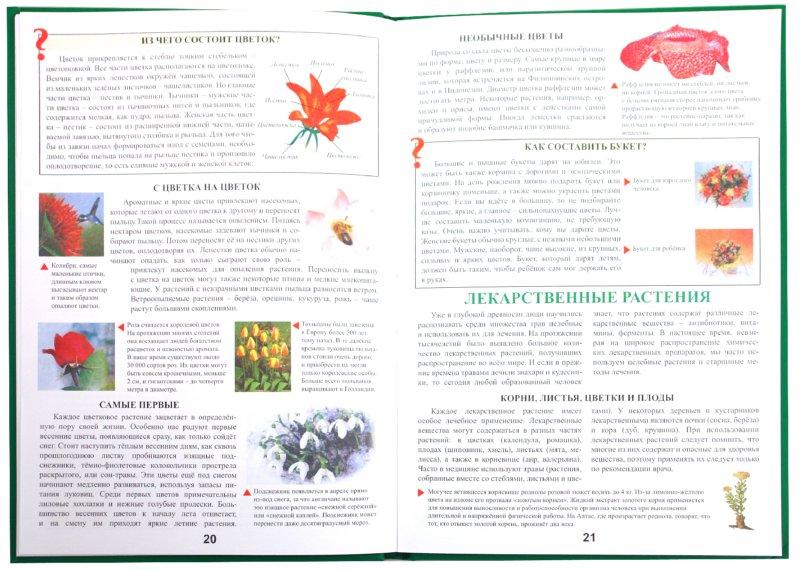 Иллюстрация 1 из 7 для Живая природа   Лабиринт - книги. Источник: Лабиринт