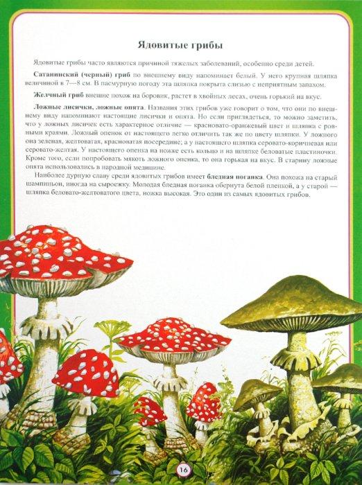 Иллюстрация 1 из 19 для Информационно-деловое оснащение ДОУ. Один на улице, или безопасная прогулка - Инна Саво | Лабиринт - книги. Источник: Лабиринт